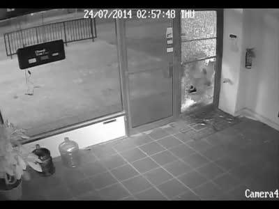 Stupid Thief Fail