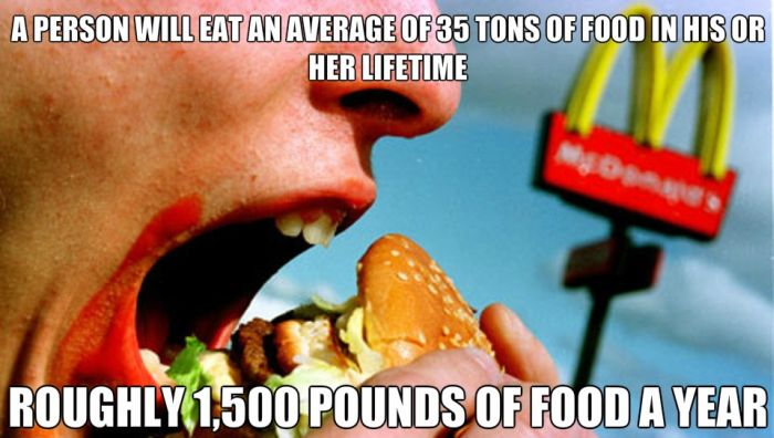 Random Facts You Need To Remember (21 pics)