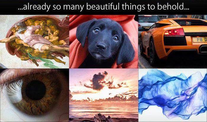 You Need To Imagine A World Where (5 pics)