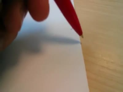 Little Spider Afraid Of The Pen