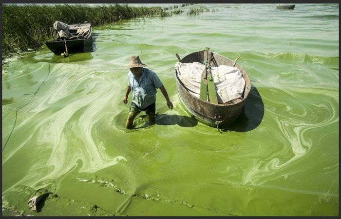 Disgusting Filthy Water In China (11 pics)