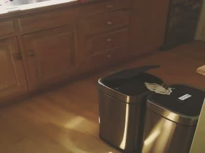 Hareket sensörlü çöp kutuları, video