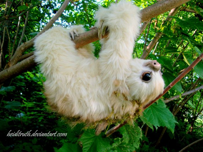 Fake Sloth That Looks So Real (19 pics)