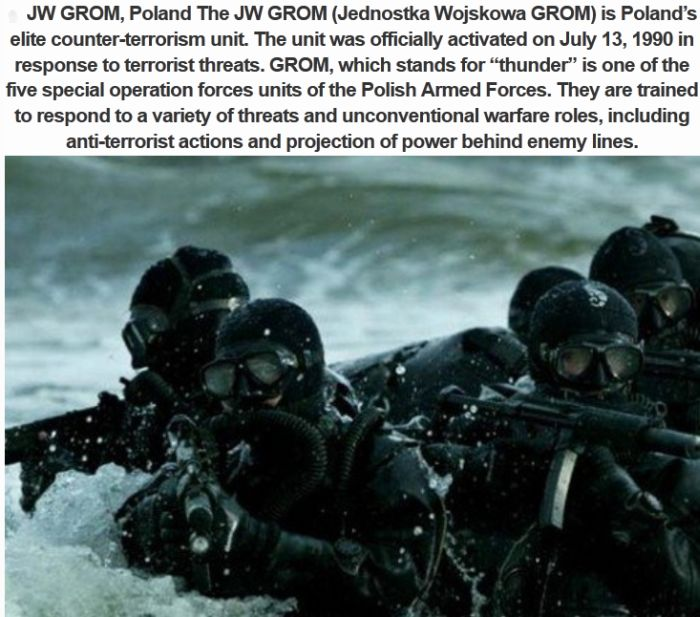 Top 10 Best Special Forces On The Planet (10 pics)