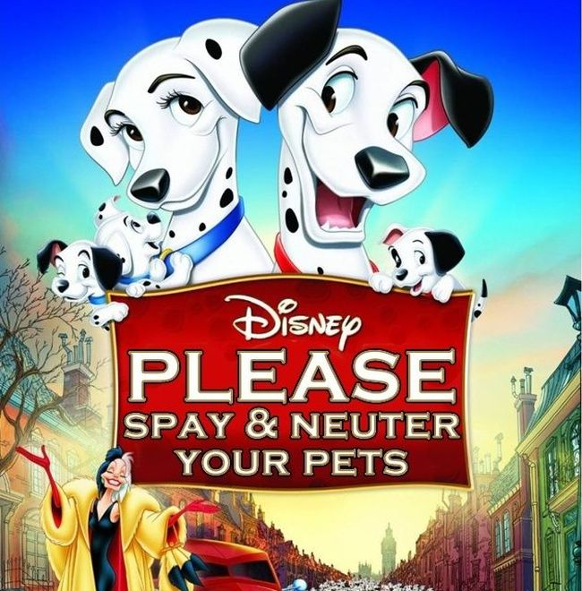If Disney Movie Posters Were Honest (19 pics)
