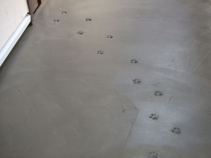 Not So Mysterious Footprints In New Concrete (4 pics)