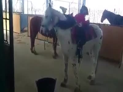 Great Way To Climb On To A Horse