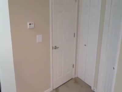 Cat Wants The Door To Be Permanently Open