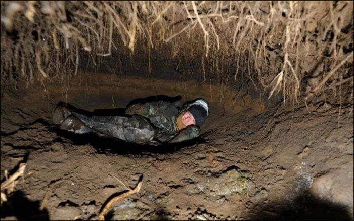 See The Inside Of A Bear Den (3 pics)