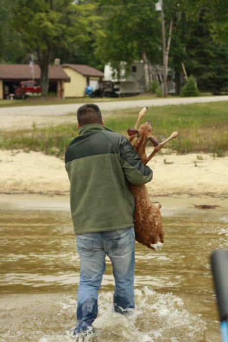 The Most Amazing Deer Rescue Ever (29 pics)