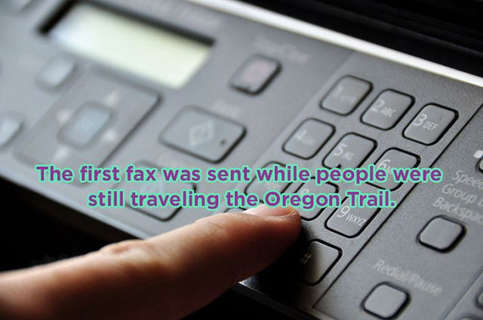 Crazy One Sentence Facts (16 pics)