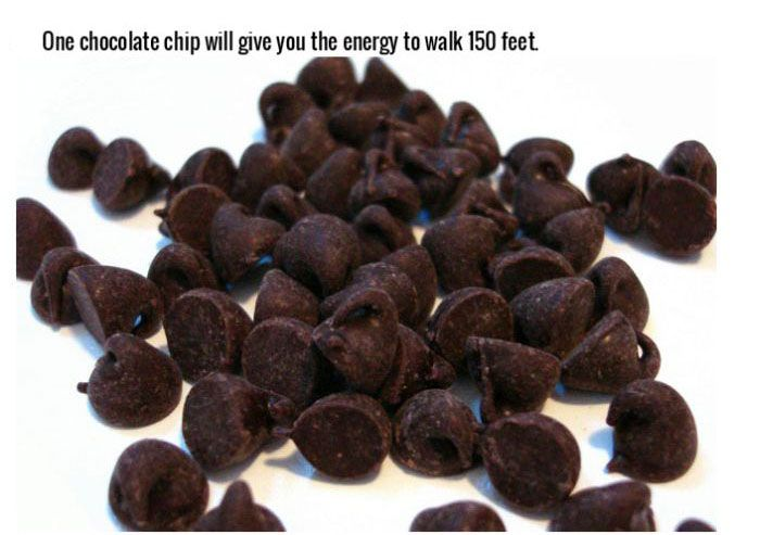 Fascinating Facts That Will Make You Love Chocolate (20 pics)