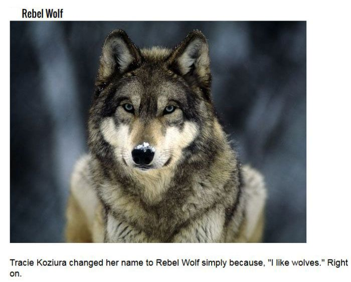 You Won't Believe These Names Are Real, But They Are (11 pics)