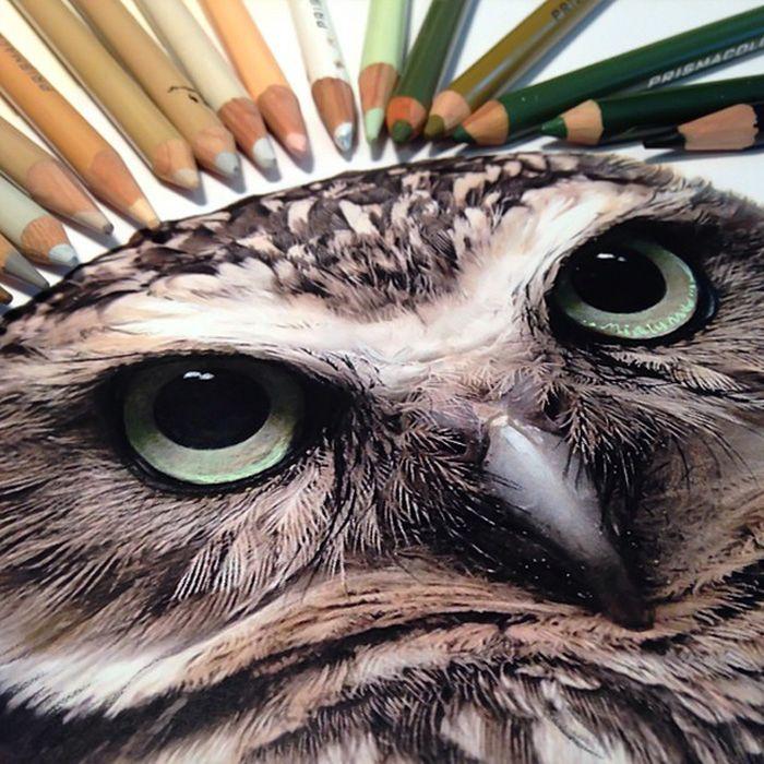 The Tools Of Amazing Artist Karla Mialynne (18 pics)