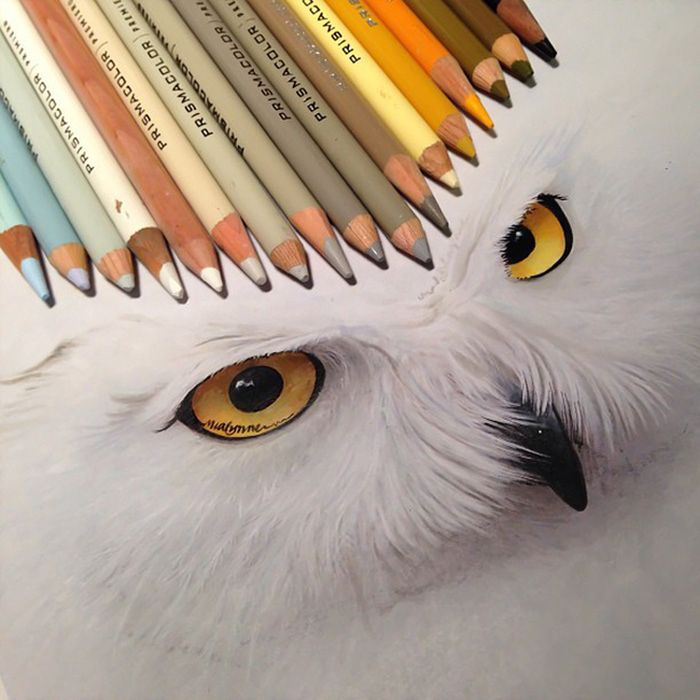 The Tools Of Amazing Artist Karla Mialynne (18 pics)