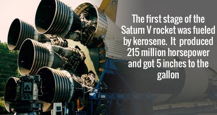 Science Facts That Will Blow Your Mind (19 pics)