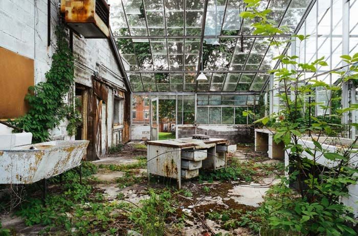 Abandoned Asylums Are Creepy Yet Somehow Beautiful (23 pics)