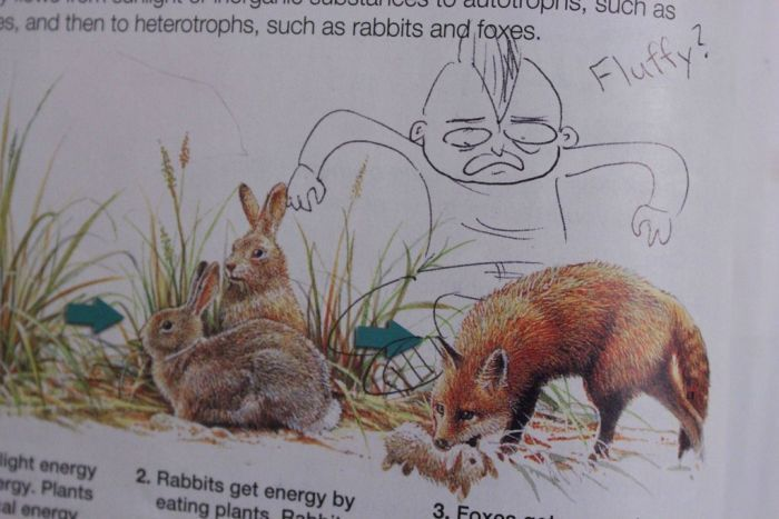 Hilarious Drawings Make Text Books Better (25 Pics)