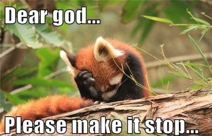 When Humans Talk To God (23 pics)