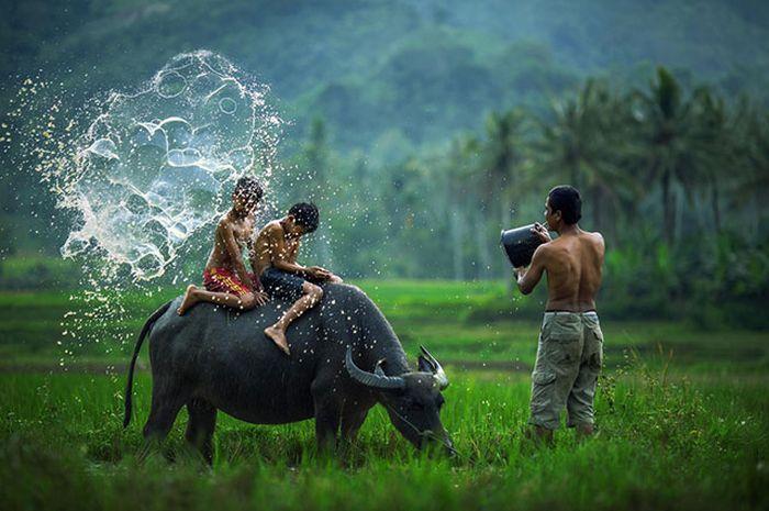 Η ζωή είναι γεμάτη όμορφες στιγμές (38 pics)