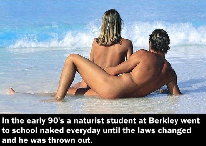 Strange Law Facts (24 pics)