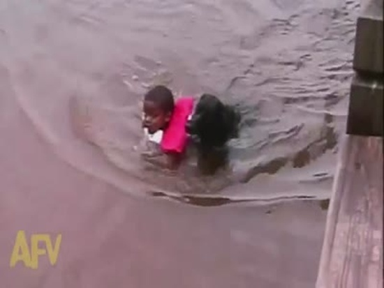 Hero Dog Rescues A Swimming Boy