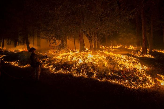 Powerful Pictures Of The California Wildfires  (23 pics)