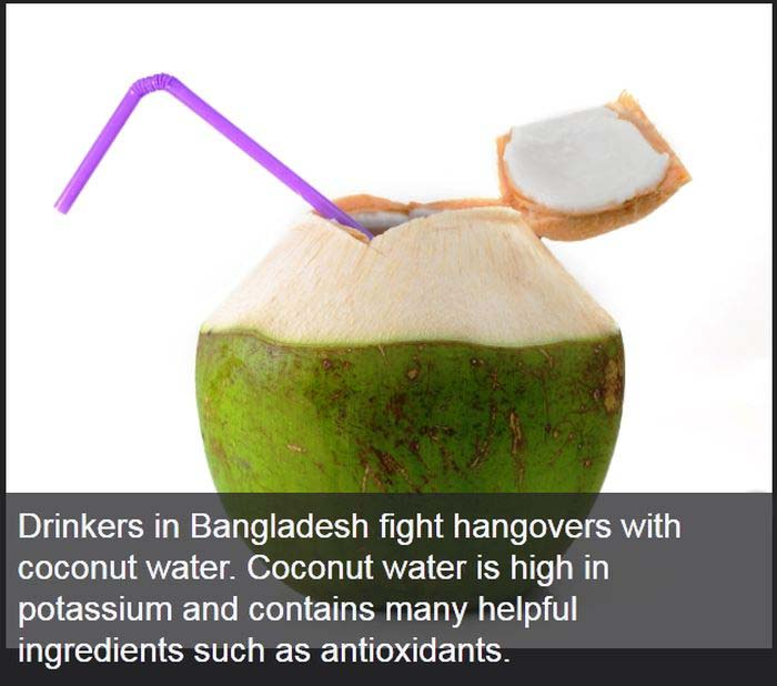 Hangover Cures From Different Parts Of The World (23 pics)