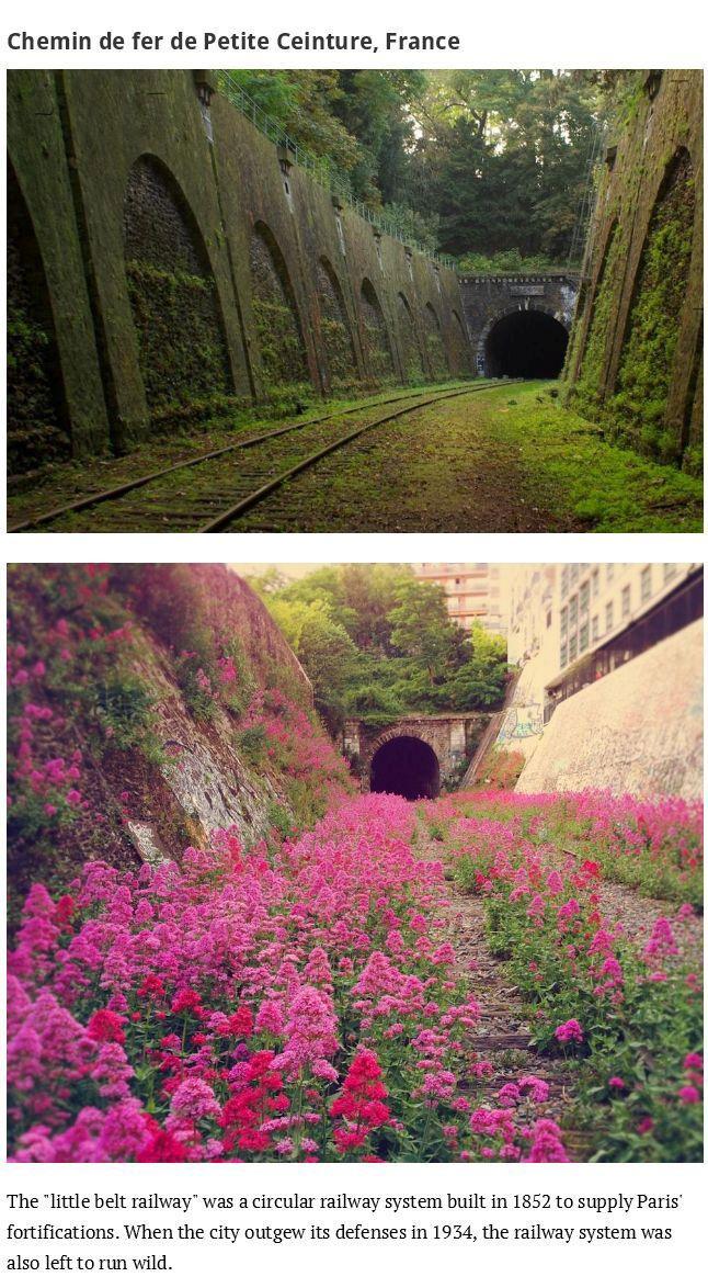 When Nature Reclaims Civilization (43 pics)