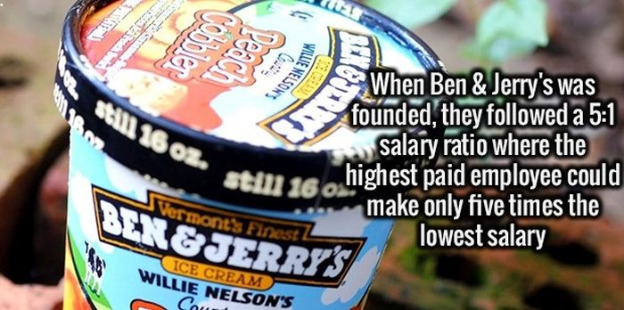 Give Your Brain A Healthy Meal With These Fun Facts (34 pics)