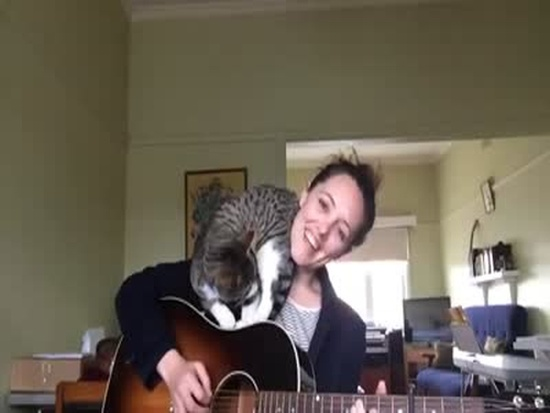 Girl And Cat Guitar Duet