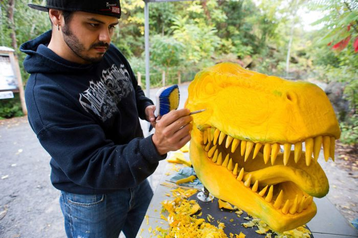 Giant Pumpkin Gets Transformed Into A T-Rex Head (8 pics)