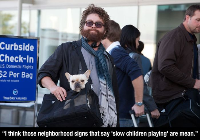 Hilarious And Genious Quotes From Zach Galifianakis (23 Pics)