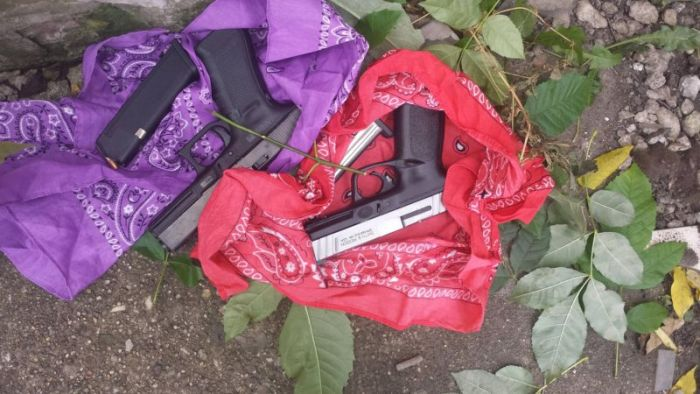 Guns In The Bushes (3 pics)