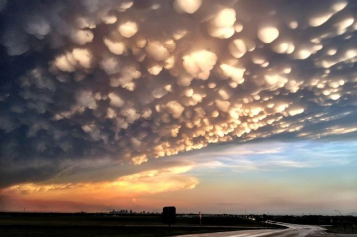 Pictures That Prove The Earth Is An Amazing Place (61 pics)