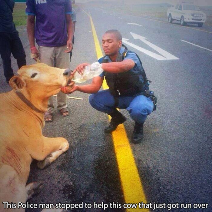 Cops That Make A Positive Difference In The World (29 pics)