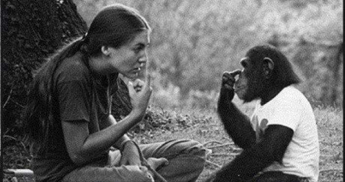 One Smart Monkey (4 pics)
