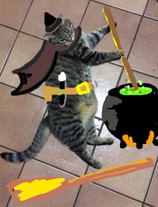 Guy Turns Snapchat Pictures Of Cats Into Masterpieces (35 pics)