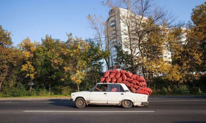 Russians Do What They Want (51 pics)