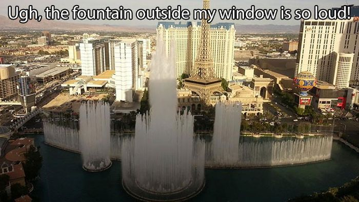 These Are Some Serious First World Problems (15 pics)