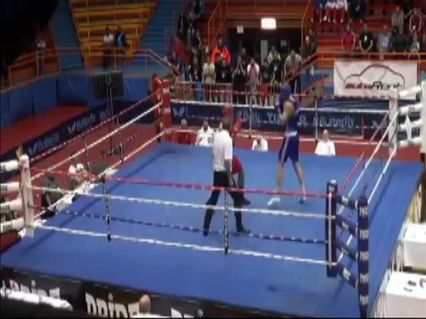 Boxer Assaults Referee