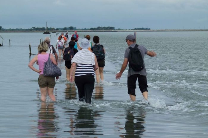 Trying To Make It Across The Passage du Gois (17 pics)