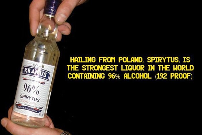 Forget Guinness World Records These Are The Alcohol World Records (15 pics)
