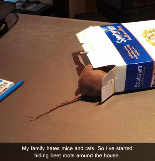 You Have To Be A Special Kind Of Evil To Do These Things (33 pics)