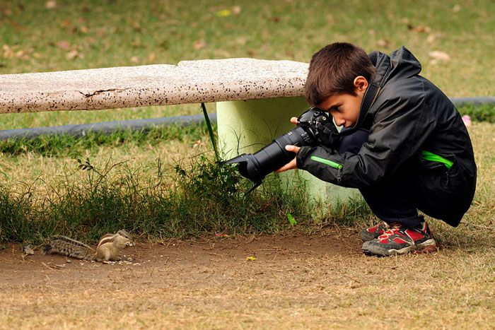 A 9 Year Old Wins Young Wildlife Photographer Of The Year (15 pics)