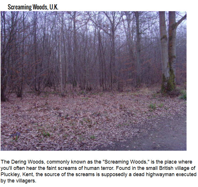 Don't Go To A Haunted House, Take A Haunted Hike (7 pics)