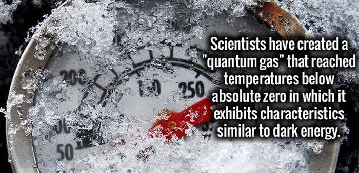 Fun Facts That You Will Never Forget (34 pics)