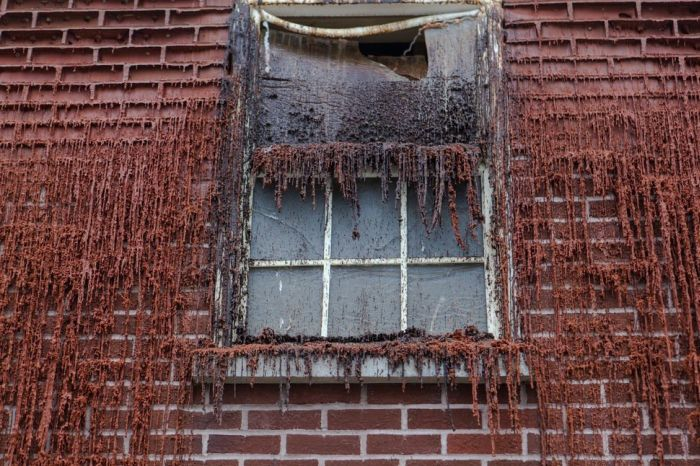 This House Of Wax Is Going To Melt In 30 Days (12 pics)