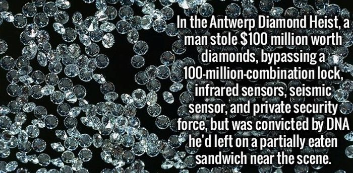 These Facts Will Get Your Brain Going (35 pics)