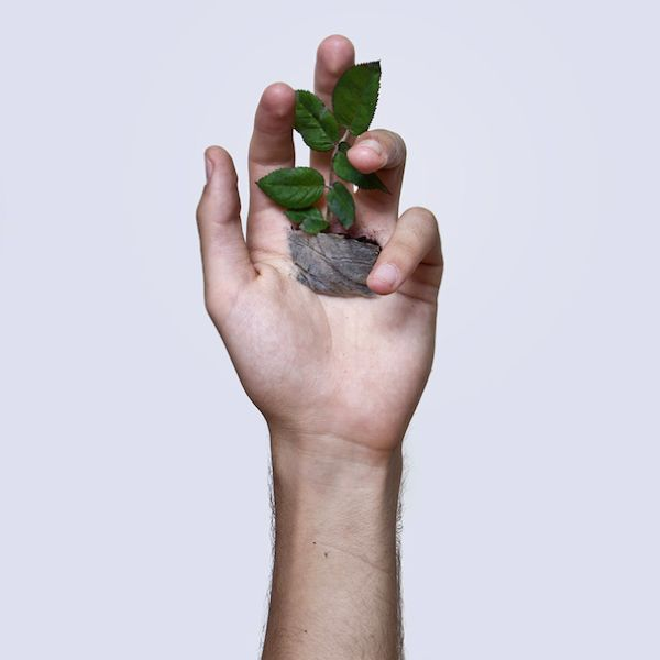 Planting A Flower In Your Hand (5 pics)